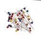 Birch Colour Head Pins Multicoloured 0.65 mm