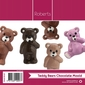 Roberts Edible Craft Teddy Bear Chocolate Mould Clear