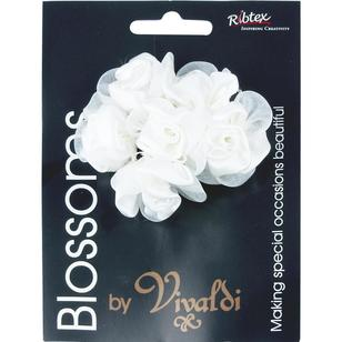 Vivaldi Blossoms 6 Head Medium Roses With Sheer Petals