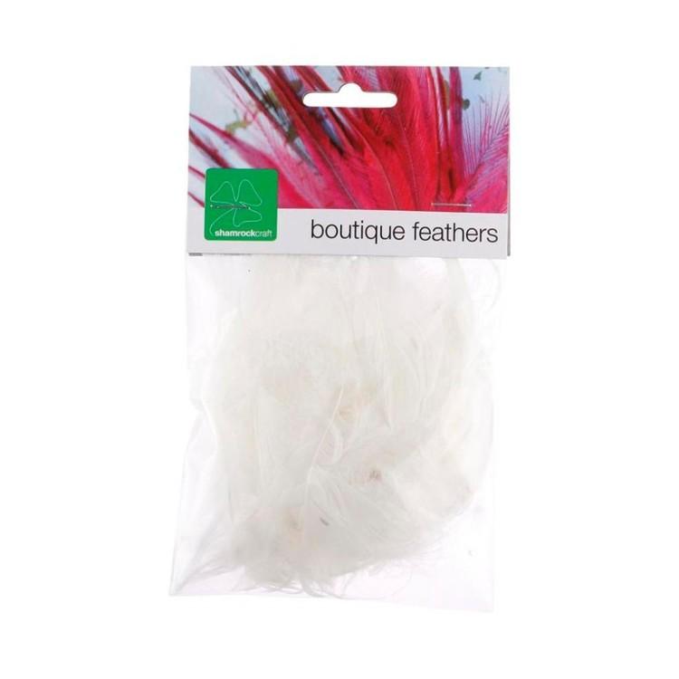Shamrock Craft Duck Feathers