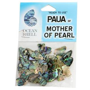 Tumbled Paua Gloss Drilled 8 G