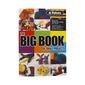 Patons Big Book Small Projects Pattern Book Multicoloured