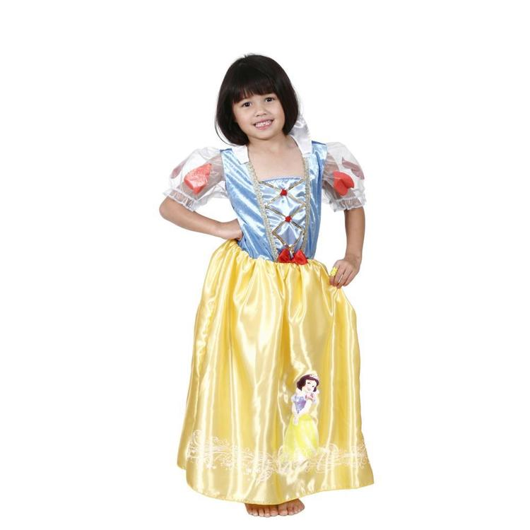 Disney Snow White Character Costume