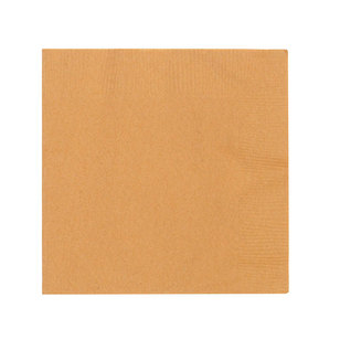 Amscan 2 Ply Gold Beverage Napkins - Everyday Bargain