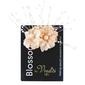 Vivaldi Blossoms 4 Head Large Pearl With Spray