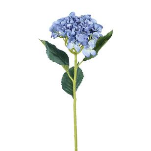 Reliance Single Hydrangea