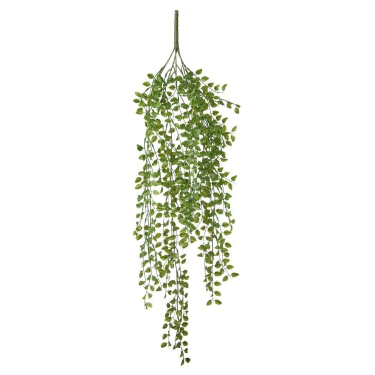 Simlex Hanging Bush