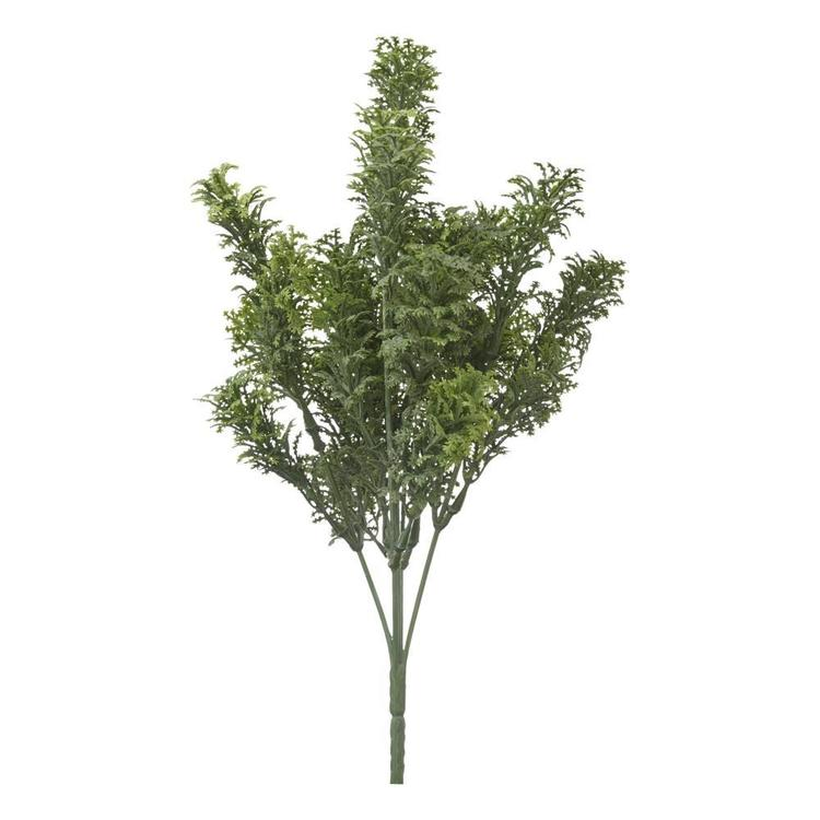 Moss Bush Green
