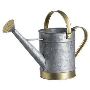 Francheville Galvanized Medium Watering Can