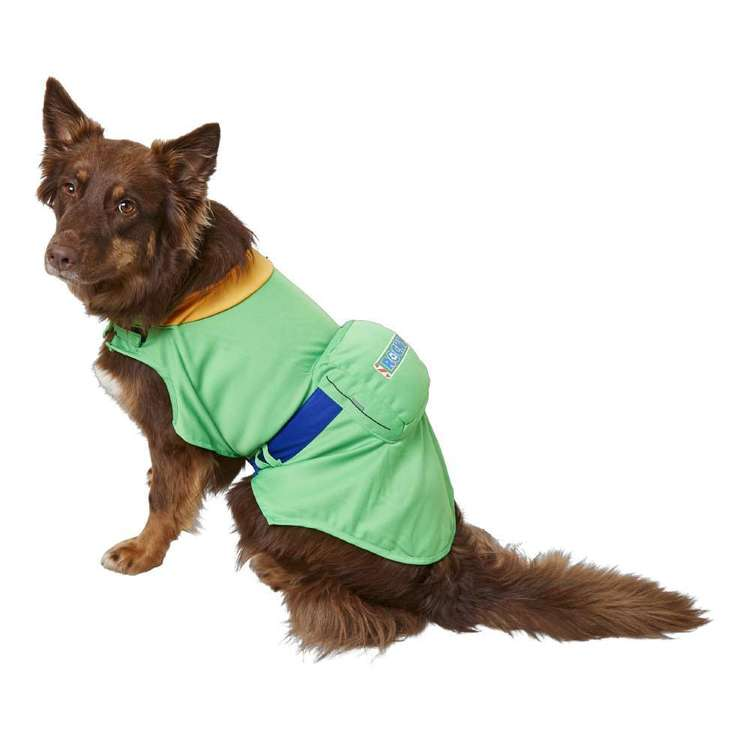 Paw Patrol Rocky Dog Costume