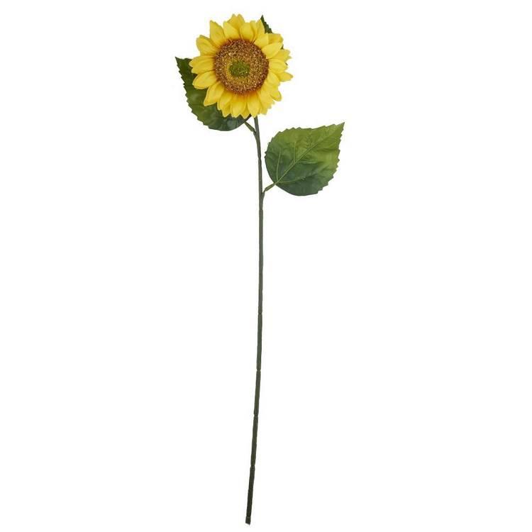 Sunflower Stem