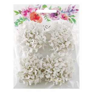 Ribtex Felicia Blossoms Pack