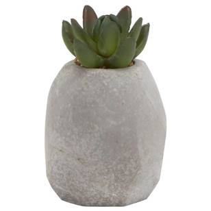 Bouclair Home Garden Cactus Cement Pot