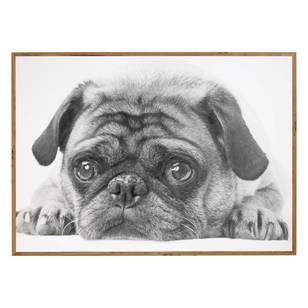 Frame Depot Wooden Wall Art Pug