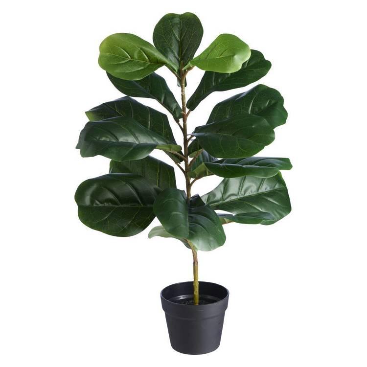 Botanica Artificial Fiddle Leaf Potted Plant