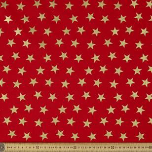 Metallic Christmas Big Star Fabric