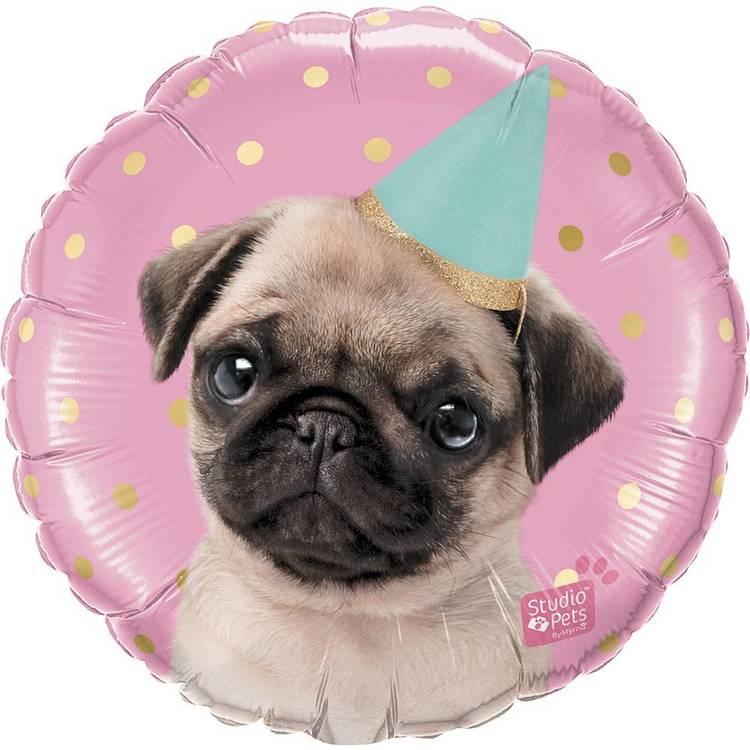 Qualatex Party Pug Foil Balloon