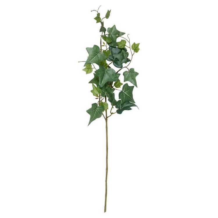 Green Stems Ivy Leaves Spray