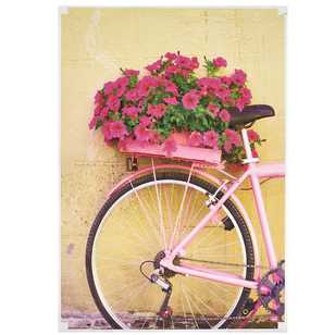 Living Space Antique Floral Bicycle Print