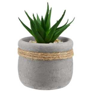 Bouclair Sumatra 6x10cm Faux Potted Plant