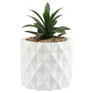 Bouclair Sumatra 10x16cm Faux Potted Plant