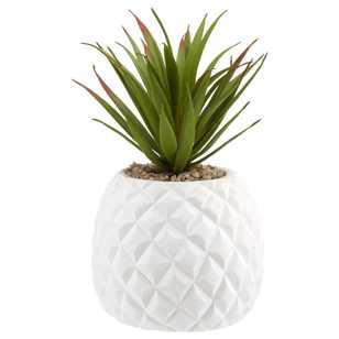 Bouclair Sumatra Pineapple Plant