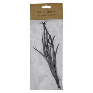Maria George Biot Feathers 10 Piece