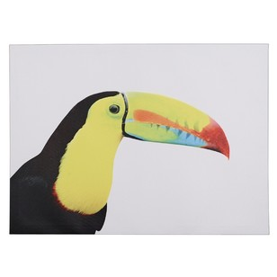 Ombre Home Neon Tropics Toucan Wall Art