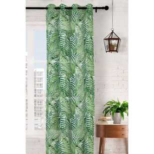 Caprice Areca Eyelet Sheer Curtains