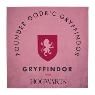 Harry Potter Founder Godric Gryffindor Wall Canvas