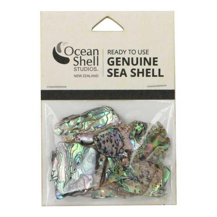 Paua Shell Pieces