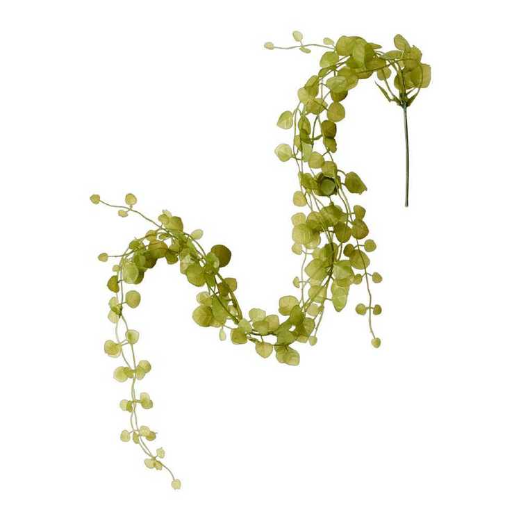 Chain Of Hearts Hanging Plant Green 74 cm