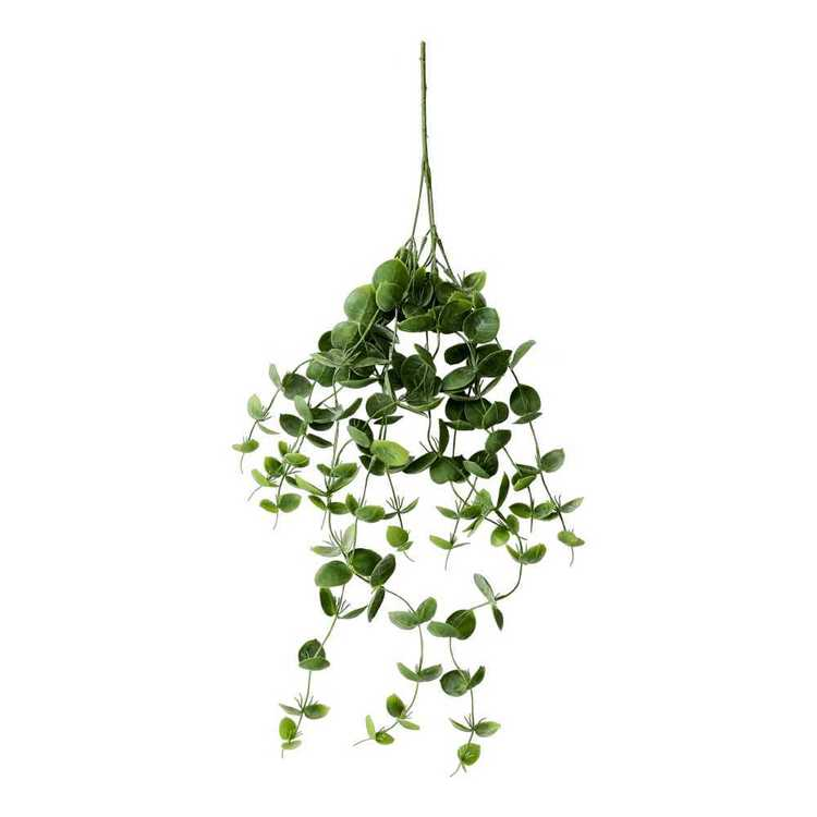 Eucalyptus Hanging Bush Green 75 cm
