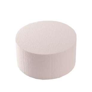 Roberts Edible Craft Round Foam Dummy