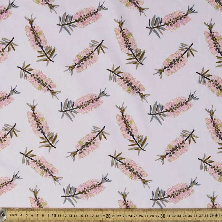 Jocelyn Proust Pink Callistemon
