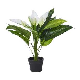 Artificial Plants Flowers For Your Home View Our Range Online