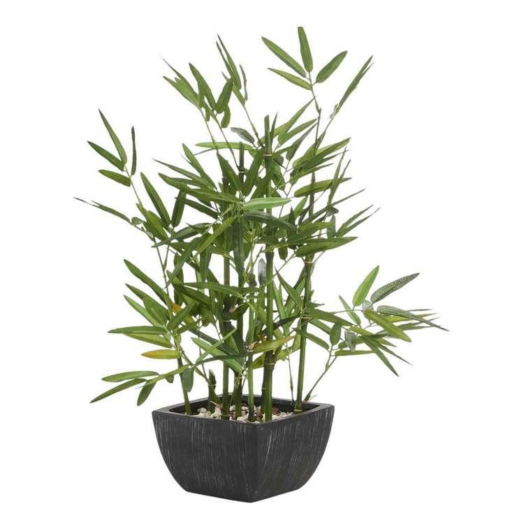 Botanica Bamboo Terra Pot