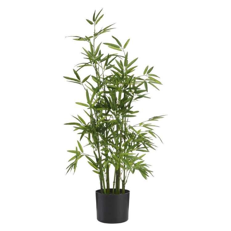 Botanica Bamboo Tree
