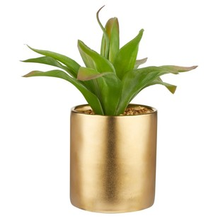 Bouclair Modern Chic Agave In Pot