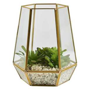 Living Space Terrarium Hexagon