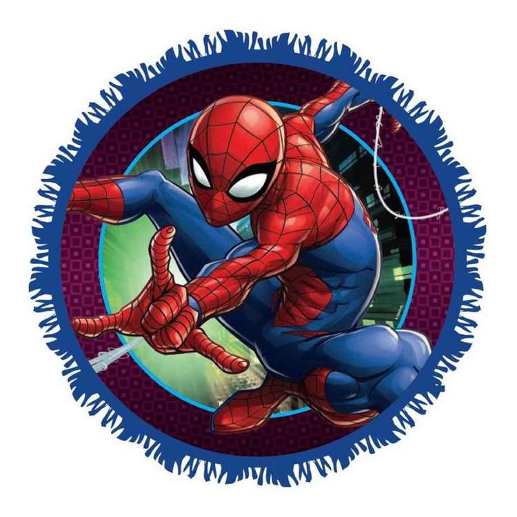 Marvel Spidermn Web Pinata