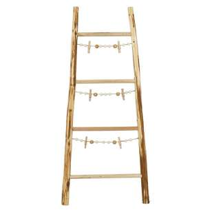 Ombre Home Winter Luxe Photo Ladder