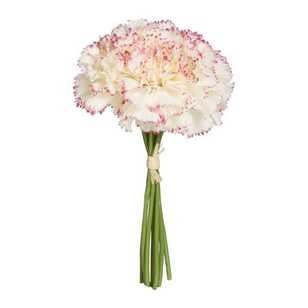 Ombre Home Winter Luxe Carnations