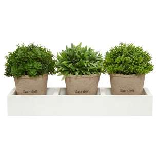 Bouclair Green Shelter Set of 3 Succulent Pot