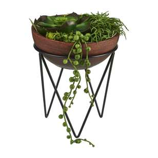 Living Space Succulent Bowl With Stand