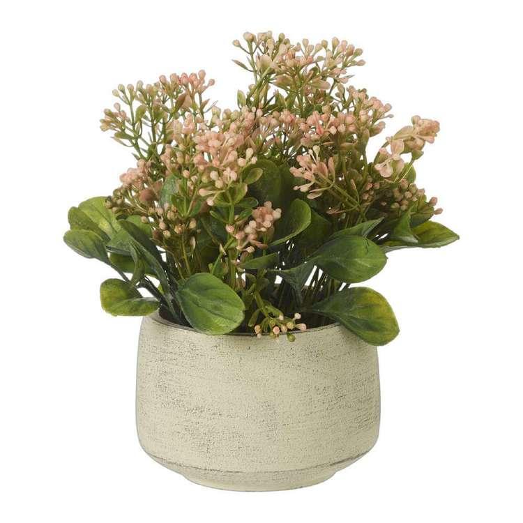 Living Space Bolocephalus Pot
