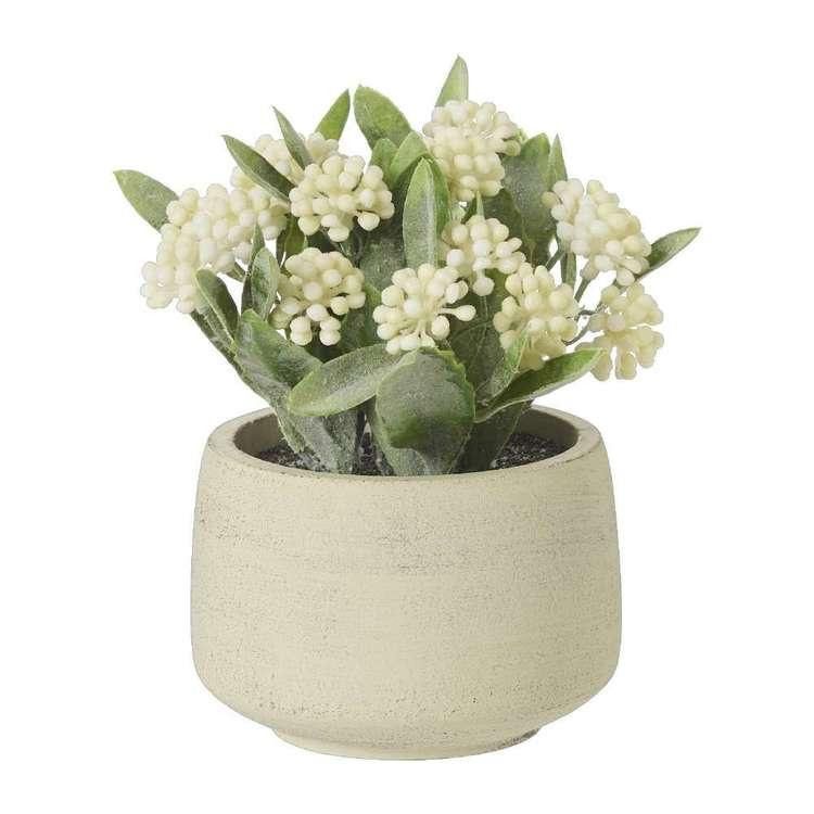 Living Space Floral Eucalyptus Pot