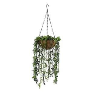 Living Space Hanging Eucalyptus Bowl