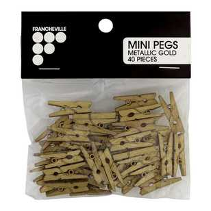 Francheville Metallic Mini Pegs