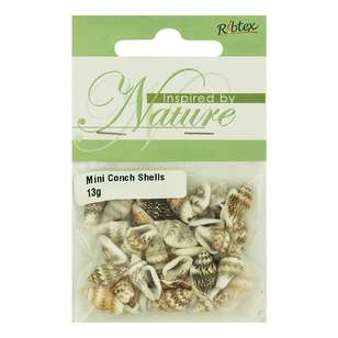 Ribtex Mini Conch Shell Beads Pack